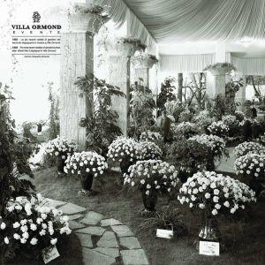 Mostra dei garofani nel 1962